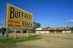 Buffalo Oklahoma    Buffalo Ranch, Oklahoma