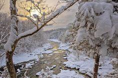 Winter Morning, by Bill Wakeley