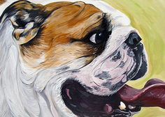 ENGLISH BULLDOG Dog Art Print bright colors yellow by WOOFFactory, $7.00