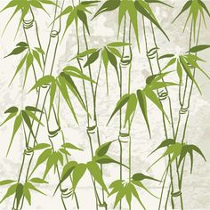 Illustration of Bamboo with leaves pattern Vector illustration vector art, clipart and stock vectors. Bamboo Wallpaper, Green Wallpaper, Wall Wallpaper, Bamboo Background, Bamboo Art, Bamboo Image, Bamboo Drawing, Art Asiatique, Bamboo Leaves