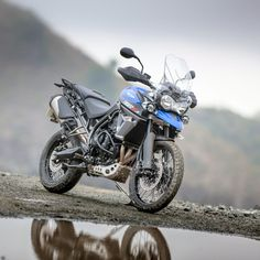 31 Top Triumph Tiger 800 Images Motorcycle Adventure Motorcycles