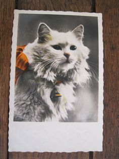 SALE !!! Antique Postcard. From my album Cats and Kittens.  color photo. 1930 era by grandma62 on Etsy