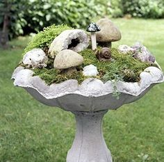 A tiny fairy garden created in a bird bath.