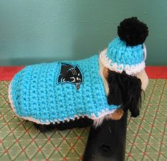 Guinea Pig Carolina Panthers Sweater and Panthers by Fancihorse
