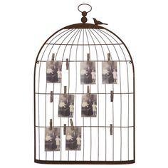 Display your favorite greeting cards and old photographs with this charming bird cage style wall fixture. Twelve clips hold treasured memories firmly to a rust-finish wire frame. A tiny love bird perc...