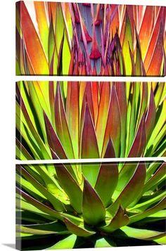 succulents, wall art