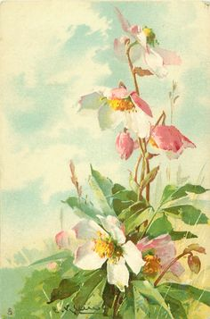 Pink wild roses by Catherine Klein ~ 1905.
