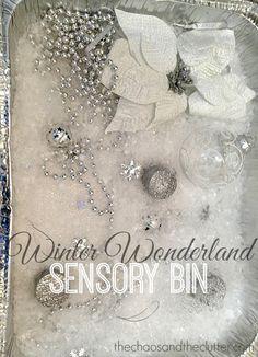 Winter Wonderland Sensory Bin - bring the fun of winter inside!