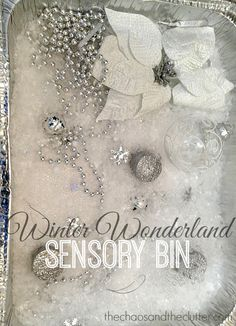 Winter Wonderland Sensory Bin - bring the fun of winter inside!