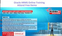 Oracle Apps HRMS online Training   http://www.training.rudraitsolutions.com/oracle-apps-hrms.html  about course details Mail me:rudraitsol@gmail.com  For More courses-  http://www.training.rudraitsolutions.com/#