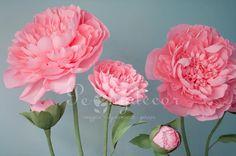 Два прекрасных розовых пиона ждут своих покупателей #peonydecor #пионы #фотосессияворонеж #фотографворонеж #peony #бумажныецветы #ростовыецветы #декорнаденьрождения