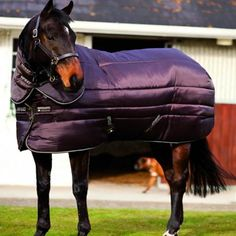 Horseware Amigo Insulator Plus Super Heavy