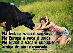 Vaca No Mundo ...
