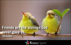 Friends are the siblings God never gave us. - Mencius #sharethis #friendship #QOTD