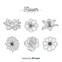 Flower Pattern Drawing, Flower Drawing Tutorials, Flower Art Drawing, Flower Sketches, Floral Drawing, Wall Drawing, Plant Drawing, Flower Drawings, Flower Patterns