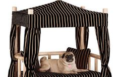 11 Chic Holiday Gifts for Your Pets