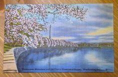 Vintage Linen Postcard Washington Monument Cherry by PaperElf, $4.75