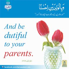 And your Lord has decreed that you worship none but Him. And that you be dutiful to your parents. If one of them or both of them attain old age in your life, say not to them a word of disrespect, nor shout at them but address them in terms of honour. Al Qura'an.