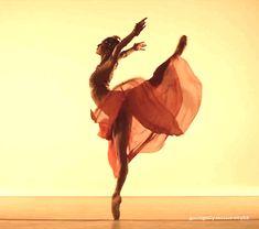 Robyn Hendricks from the Australian Ballet in a photo shoot as Gamzatti. Australian Ballet, Gifs, New Beginnings, Human Body, Ballet Dance, Photoshoot, Hong Kong, Videos, Google