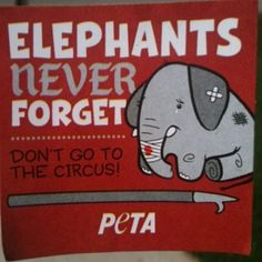 PETA T-shirt. this is why i hate/don't support the circus