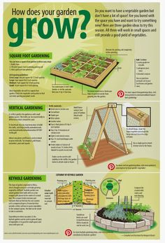 Different ways to grow a small garden graphic