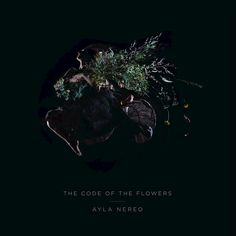 Tightrope Walker by Ayla Nereo Sweet Nothings, Music Is Life, Whisper, Told You So, Coding, Songs, Fern Gully, Flowers, Album