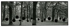 Aliki Braine - The Hunt, Black and White Photograph, 85 x 224 cm, 2009 Photography Sketchbook, Photography Words, Photography Projects, Artistic Photography, Different Points Of View, Pattern Art, It Works, Black And White, Gallery