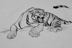 Old animation design drawings- In packing my home, I've come across some old animation design drawings I've done over the years. These particular drawings are from Aladdin, The Lion King, Mulan, and Brother Bear Tiger Sketch, Tiger Drawing, Big Cats Art, Cat Art, Animal Sketches, Animal Drawings, Cat Character, Character Design, You Draw