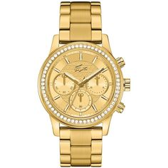 Lacoste Women's Chronograph Charlotte Gold-Tone Stainless Steel... (290 AUD) ❤ liked on Polyvore featuring jewelry, watches, accessories, bracelets, stainless steel jewelry, structure watches, gold tone watches, stainless steel jewellery and chronograph wrist watch