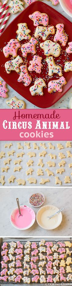 Personalized Graduation Gifts - Ideas To Pick Low Cost Graduation Offers Homemade Circus Animal Cookies - These Are Better Than The Store-Bought Kind Hide The From Everyone They'll Go Quick Yummy Cookies, Sugar Cookies, Yummy Treats, Sweet Treats, Yummy Food, Cookie Desserts, Just Desserts, Cookie Recipes, Dessert Recipes