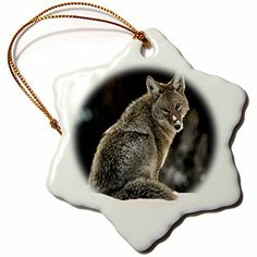 3drose Coyote Snowflake Porcelain Ornament, 3-Inch * Click the iamge for more details  at Christmas Home Decor