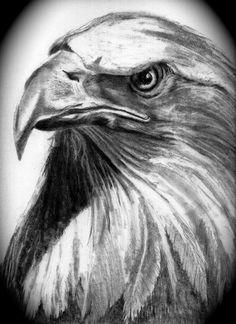 American Flag Pencil Drawing - Bing Images