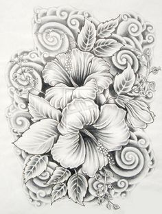 drawings of flowers hibiscus. Possible tattoo design?
