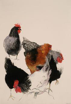 Six Chickens, 2006, by Mary Sprague