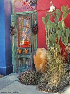 Southwest Door by Lucinda Walter