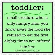 Metro Detroit Mommy: My Top Ten Favorite Baby and Toddler Memes For This Week