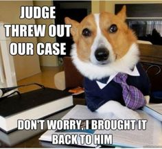 judge threw out our case- don't worry, i brought it back to him
