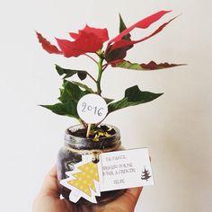 Lembrancinha de natal. Vasinho de planta