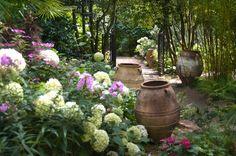 Les jardins Agapanthe