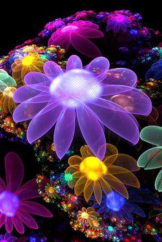 Flower Fractal                                                                                                                                                                                 もっと見る