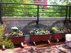 Earthbox Gardening: Information On Planting In An Earthbox