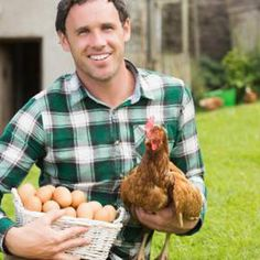 Grants for Young Farmers to Get Into Business Easy Chicken Coop, Chicken Coop Plans, Fresh Chicken, Chicken Eggs, Raising Bees, Raising Chickens, Us Department Of Agriculture, Young Farmers, Female Farmer