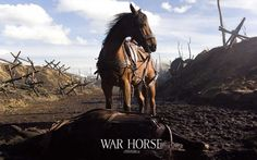 Another scene from War Horse