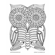 Day Of The Dead Owl Coloring Page Artist Jennifer Stay Has Created Another Downloadable Adult
