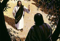 GERANDO VIDAS EM CRISTO JESUS: GRATOS PELA A SALVAÇÃO – LUCAS 19:10