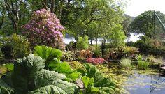 Colintraive Gardens - Scotland's Gardens