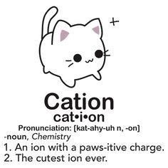 Cation cat chemistry joke