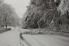 Power outages--not roads--were the biggest problem after a winter storm dumped several inches of snow across the WXII viewing area Thursday.