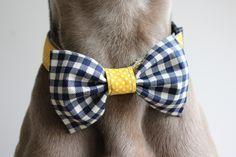 #handmade #dogcollar #wedding #dots