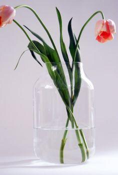 glass vase / HAPPYsthlm